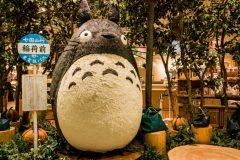 Totoro Osaka